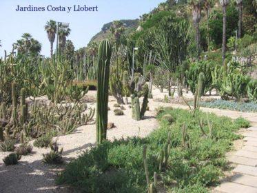 Jardines botánicos de España. 3