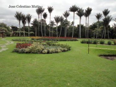 Jardines botánicos de España. 4