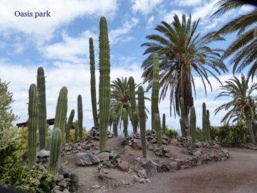 Jardines botánicos de España. 5