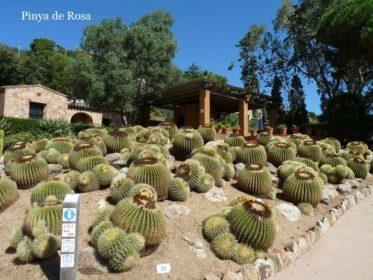 Jardines botánicos de España. 6