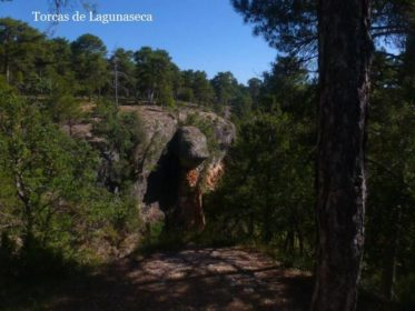 RESERVAS NATURALES DE ESPAÑA. 5